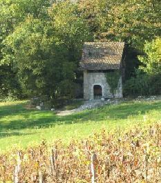cellier-sur-le-sentier-des-vignes-commune-de-motz